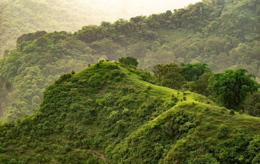 hill, grass, grasslands-6557956.jpg